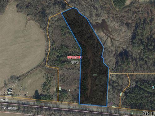 Walstonburg Tracts/Owner Financing : Walsonburg : Greene County : North Carolina
