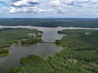 Water's Edge At Lake Wateree, Sc : Winnsboro : Fairfield County : South Carolina