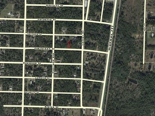 Bay County, Fl $5,000 Reduced : Fountain : Bay County : Florida