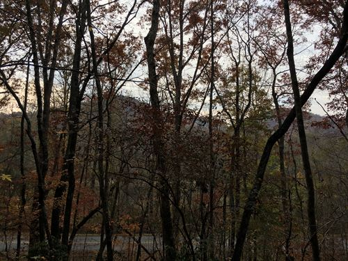 Wooded, Private : Westminster : Oconee County : South Carolina