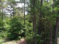 Lake Secession Frontage : Iva : Abbeville County : South Carolina