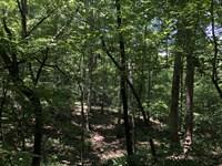 Wooded Acreage : Westminster : Oconee County : South Carolina