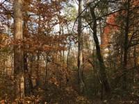 Beautiful Water Front Views : Westminster : Oconee County : South Carolina