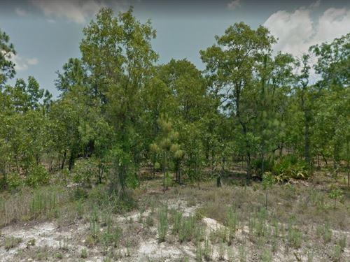 Hernando County, Fl $27,500 : Brooksville : Hernando County : Florida