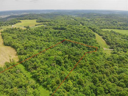 Blizzard Ridge Rd, 12 Acres : Uhrichsville : Tuscarawas County : Ohio