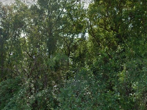 Pasco County, Fl $60,000 : New Port Richey : Pasco County : Florida