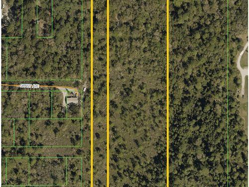 Residential Land : Eustis : Lake County : Florida