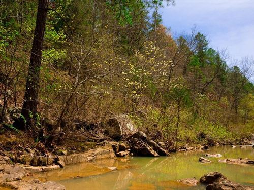 Beautiful Stream Property : Wilburton : Latimer County : Oklahoma