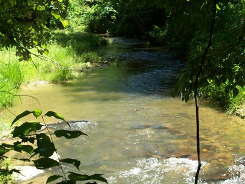 North Georgia Mountain Creek : Ellijay : Gilmer County : Georgia