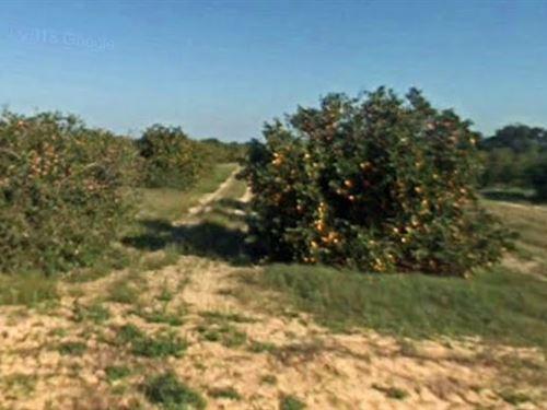 Polk County, Fl $230,000 Negotiable : Lake Wales : Polk County : Florida