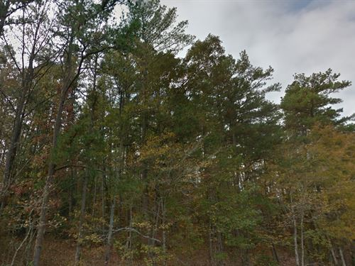 Garland County, Ar $9,000 Neg : Hot Springs Village : Garland County : Arkansas