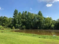 Beautiful Land With Pond : Woodville : Wilkinson County : Mississippi