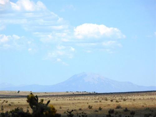 Five Acres In Las Animas : Model : Las Animas County : Colorado