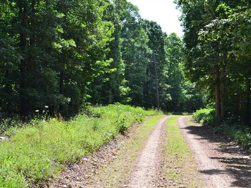 10 Acres of Residential,Recrea : Harriet : Searcy County : Arkansas