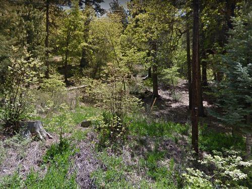 San Bernardino County, Ca $25,000 : Angelus Oaks : San Bernardino County : California