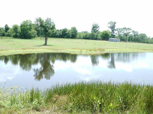 7 Gorgeous Grimes County Acres For : Navasota : Grimes County : Texas