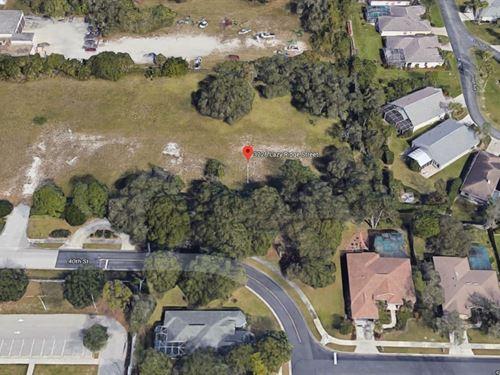 .16 Acres In Sarasota, FL : Sarasota : Florida