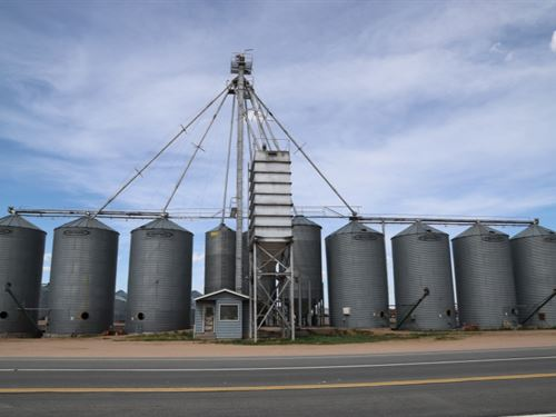 Yuma County Grain Online Auction : Yuma : Colorado
