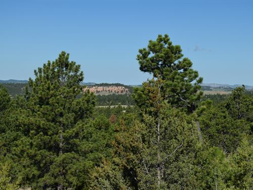 Lot 12 Big Sky : Hot Springs : Custer County : South Dakota