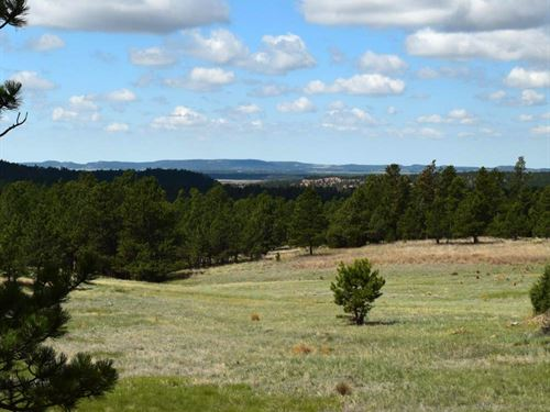 Lot 3 Prong Horn : Hot Springs : Custer County : South Dakota