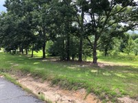 .79 Acre Residential Lot : Cochran : Bleckley County : Georgia