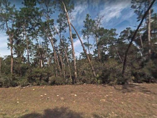 Marion County, Fl $23,000-Neg : Ocala : Marion County : Florida