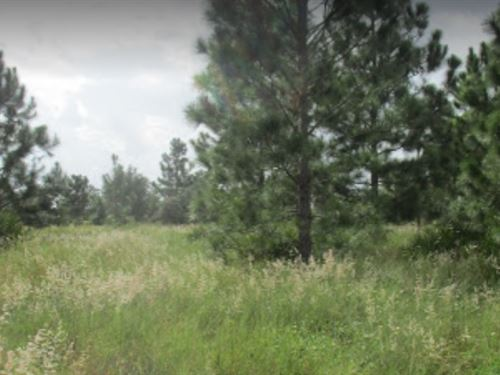 Polk County, Fl $10,000 : Frostproof : Polk County : Florida