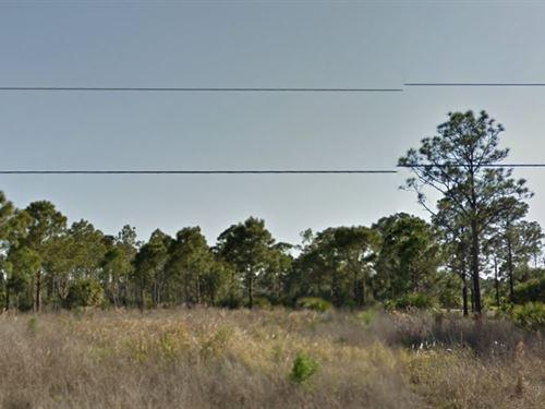 Brevard County, Fl $40,000 Neg : Palm Bay : Brevard County : Florida