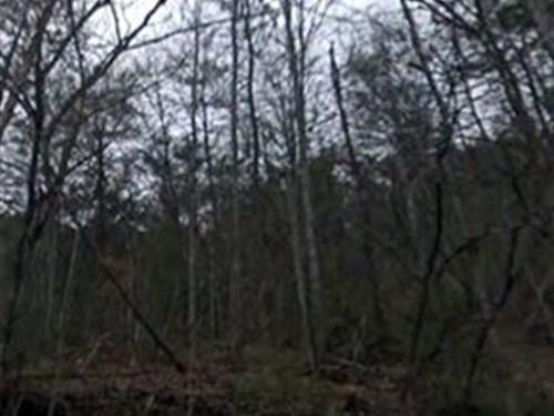 Cocke County, Tn $32,000 : Del Rio : Cocke County : Tennessee