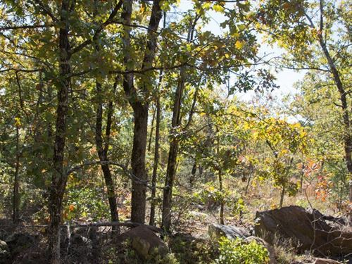 Beautiful Woodland Escape 171 : Wilburton : Latimer County : Oklahoma