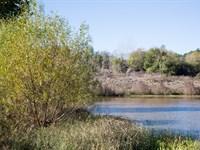 Beautiful Stream Retreat : Wilburton : Latimer County : Oklahoma