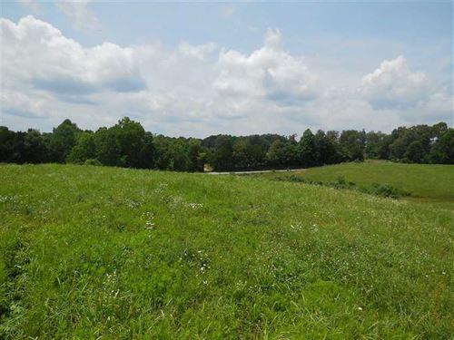 Davis 5.8 - Tract 4 - Home Site WI : Magnolia : Larue County : Kentucky