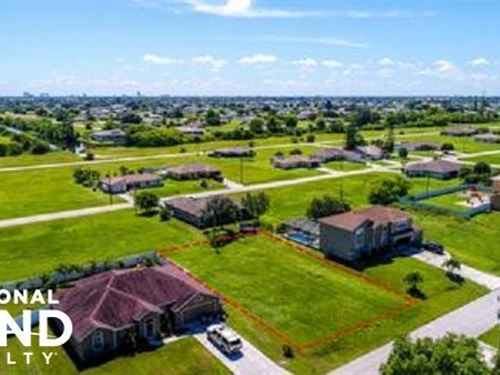1137 Vacant Dry Lot : Cape Coral : Lee County : Florida