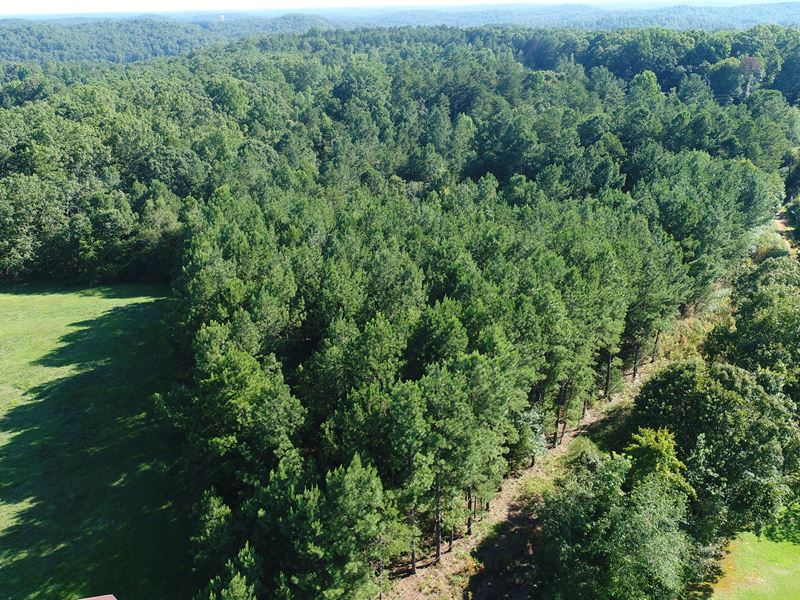 Country Living Lot For Sale Westminster Oconee County South