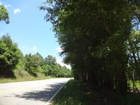 13.82 Acres - Unrestricted Wood : Liberty : Anderson County : South Carolina