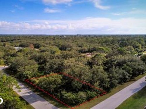Large Corner Lot : Port Charlotte : Charlotte County : Florida
