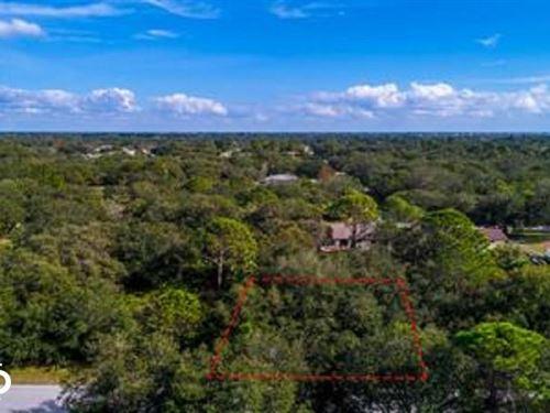 Hampton Adjacent Lot 2 : Port Charlotte : Charlotte County : Florida
