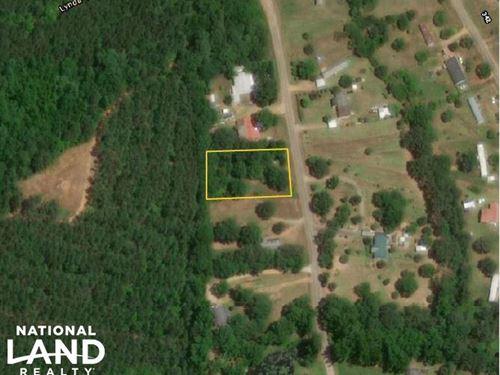 Hickory Lane Homesite : Moundville : Hale County : Alabama