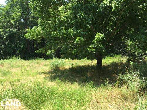 .74 Acre Lot Near White River : Devalls Bluff : Prairie County : Arkansas