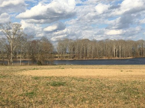 Lot 6 In Windhaven Lakes : Hope Hull : Lowndes County : Alabama
