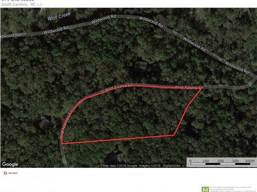 Wild Azalea - 4 Acres With Mountain : Marietta : Greenville County : South Carolina
