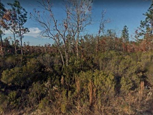 Levy County, Florida $15,000 : Williston : Levy County : Florida