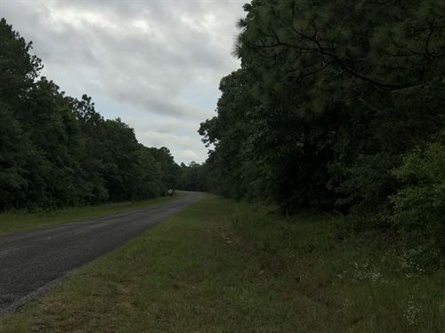 Ariton Corner Lot - 4 Acres : Ariton : Dale County : Alabama