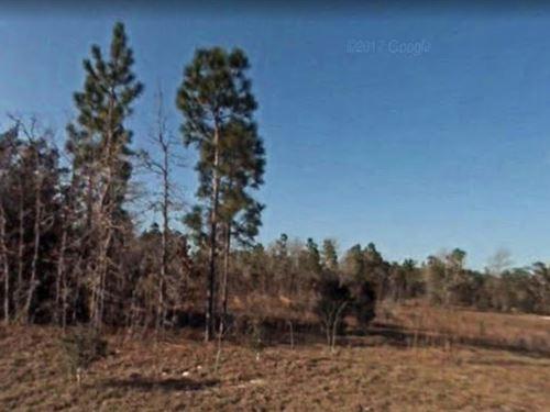 Marion County, Fl $27,500 Neg : Ocala : Marion County : Florida