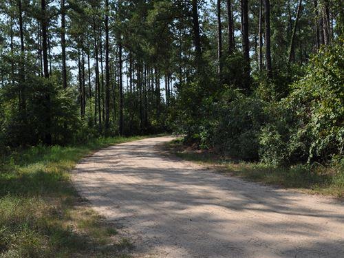 7.78 Acres Cr 2125 : Rye : Liberty County : Texas