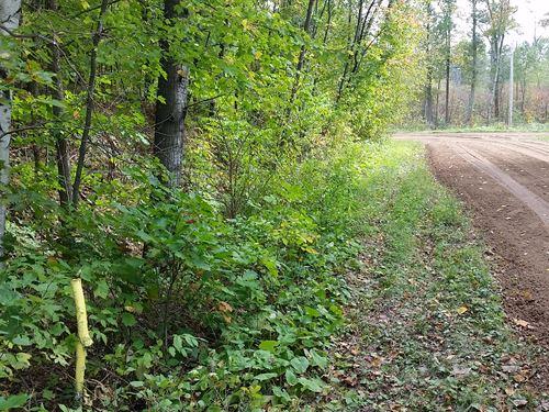 Rv/Camper Lot Near Mille Lacs Lake : Garrison : Crow Wing County : Minnesota