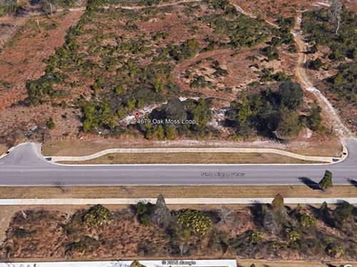 .2 Acres In Middleburg, FL : Middleburg : Clay County : Florida