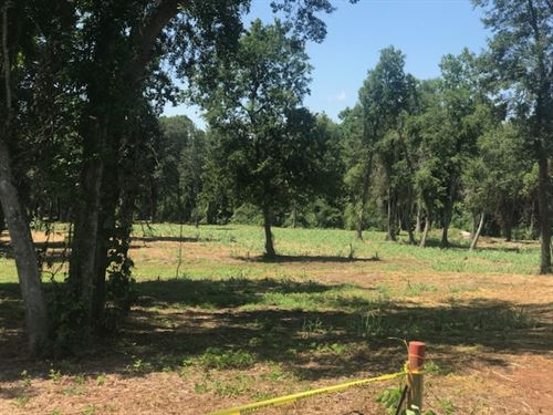 Beautiful Lot With Pond And Creek : Perry : Houston County : Georgia