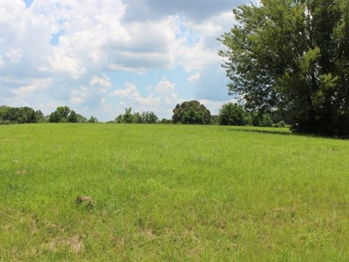 4.96 Acres In Hinds County In Terry : Terry : Hinds County : Mississippi
