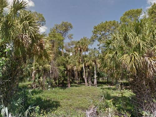 Collier County, Fl $70,000 : Naples : Collier County : Florida